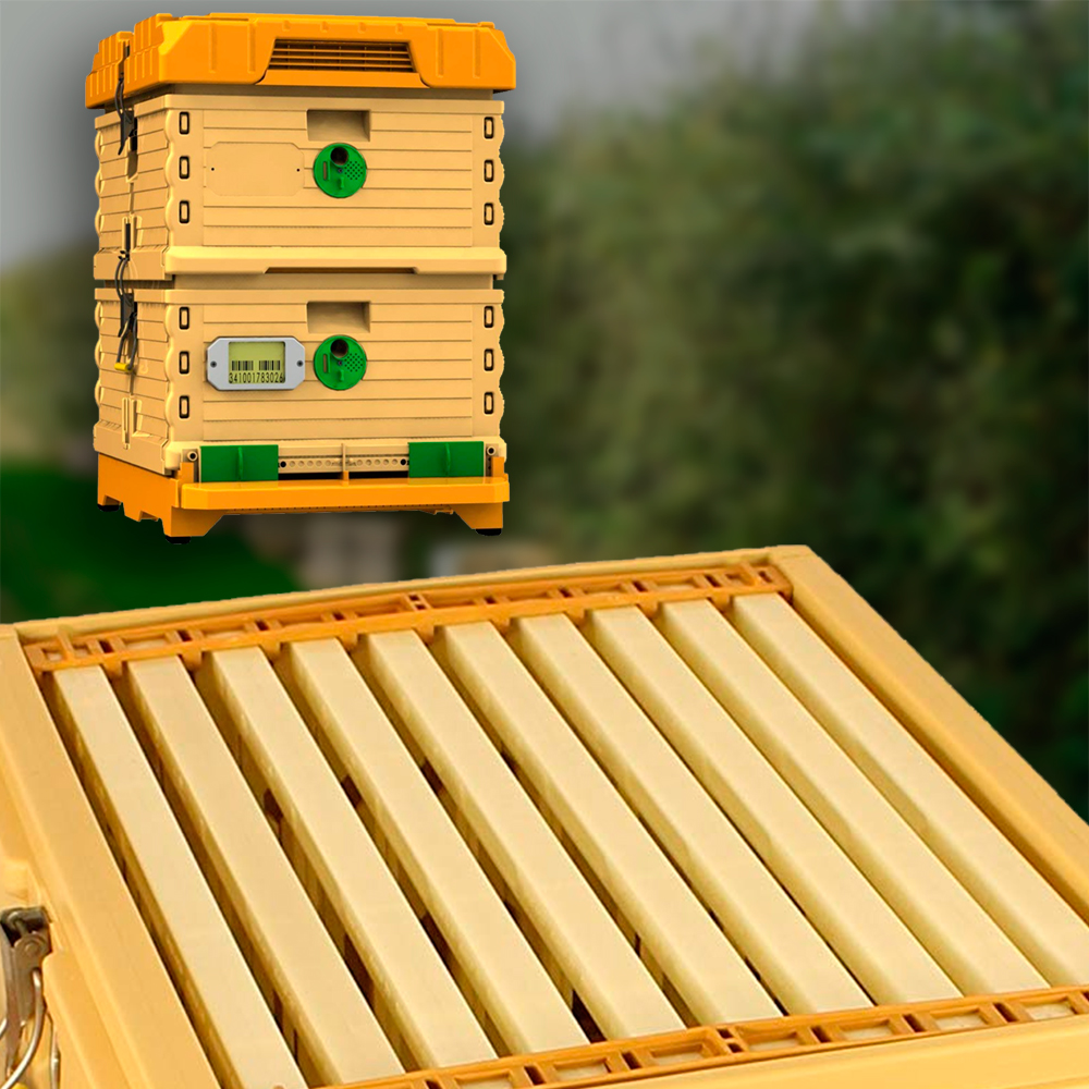 Apimaye Thermo Hive with Plastic Frames