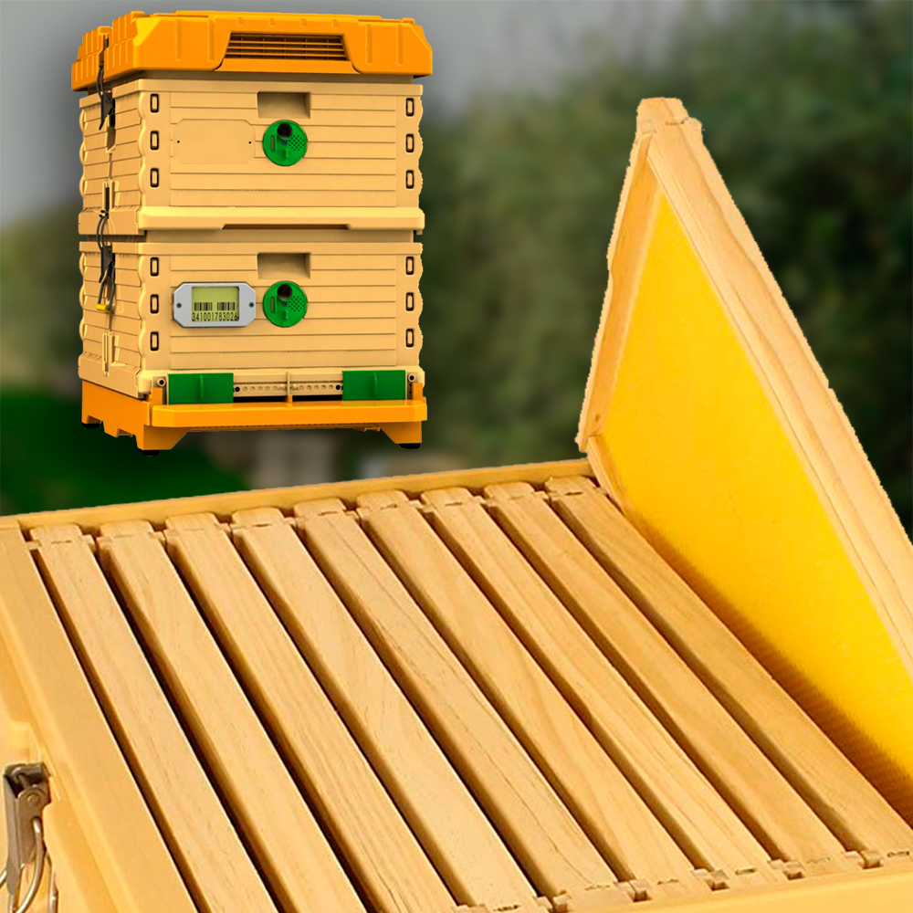 Apimaye Thermo Hive with Wooden Frames