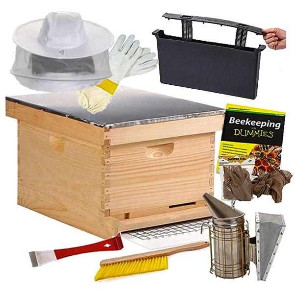 Little Giant Beginner Beehive Kit
