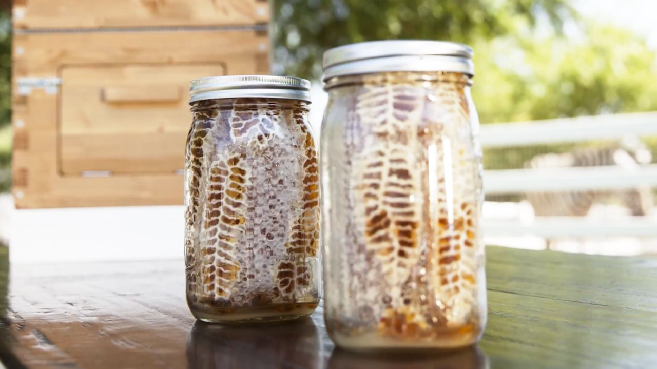 summerhawk ranch mason jar beehive review