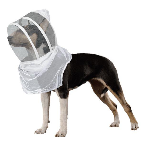 Dog beekeeping suit