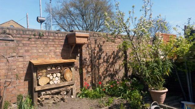 bait hives for honey bees