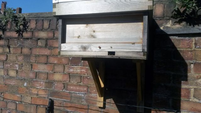 how to build a bait hive for honey bees