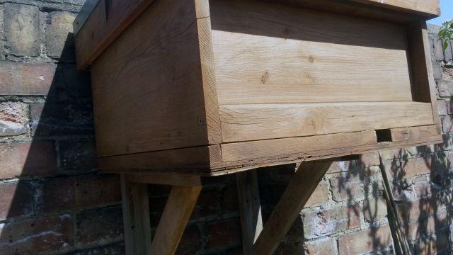 swarm traps and bait hives pdf